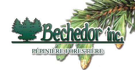 Bechedor inc.